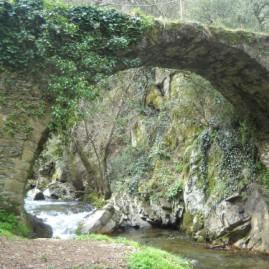 Puentes de Malpaso